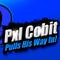 Pxl Cobit in Super Smash Bros For 3DS/Wii U
