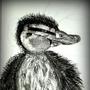 Baby duck by VikingX
