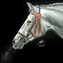 Midnight breath by Pencil-Pony