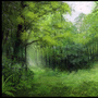 Forest Speedpaint