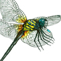 Dragon Fly Technical
