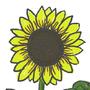 Sunflower by Jogurt-NG