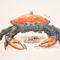 DnD Guardian Crab