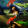 Tod and Copper (The Fox and the Hound) (Before and After) by kittenbombs1