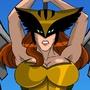 Hawk Girl by Shapow64