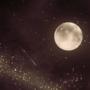 Falling Star by radshoe