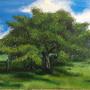 The Tree by zanaelf