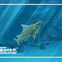 Shark by animationkid333