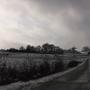 snowy fields by CyberMarionette