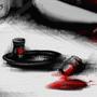 'RRH 2: Insanity' by BloodyAngel88