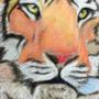 Tiger Blink by DanJamesv