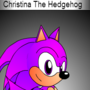 Christina The Hedgehog by SonicBoom2013