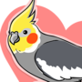 Cockatiel Sticker by yoshik0