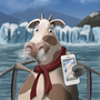 Selfie cow by David-Montoya-Irritu