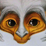 Mumbeltrousse portrait by Kayas-Kosmos