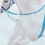 Circus horse by KattyC