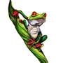 Red eyed tree frog by MojoRising