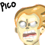 Pico- practice