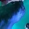 Daily Imagination #114 - Christmas Dingus