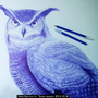 Realistic Owl with blue ballpoint pen by DareGB