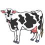 Mt. Vernon, Illinois - Cow Gif by Wondermeow