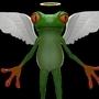 Angle froggy