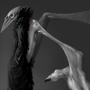 (older work) Axius by CatgeckoMironov