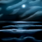 Sea Night