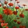Field by johnkilo
