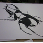 Beetle. by MikeS