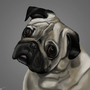 Pug by RealBenKM