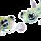 Orb Nymphs