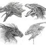 Dragon Heads by ShadowElite951