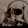 skull desktop