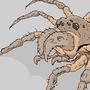 Crail Spider by krimmson