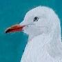 Gull by HlihorAlecsandra