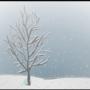 Winter by SirCannabisClock