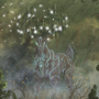Spirit Grove by MacOFlannigan