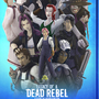 Legacy of a Dead Rebel Poster