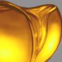 Honey Study #2