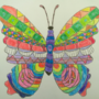 Butterfly Patterns by ShaeGuy