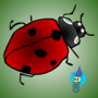 lady bug by ericpolley