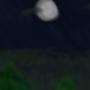 Night Sky by Sirena36421