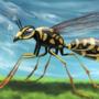 Summer Wasp by Mozakade
