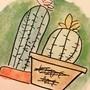 dumb cacti