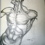 Hogarth Anatomy Drawing by Naulen