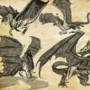 occult dragons collection