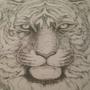 W.I.P. Tiger by ChansLand