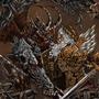 Angel & demon by Stach