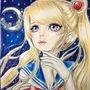Sailor moon: fighting evil by moonlight by amandadarko